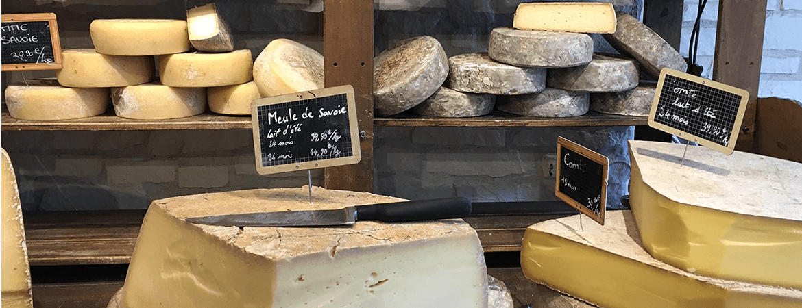 All the Cheese: 3 Trends for Dairy Product Production Industry cheese