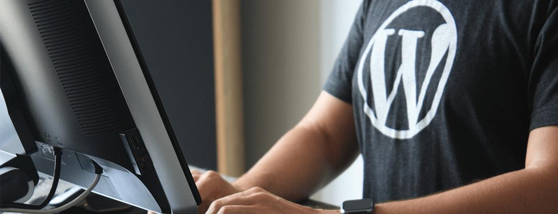 Do You Need a WordPress Page Builder Plugin?